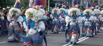 carnaval-santa-cruz_tenerife